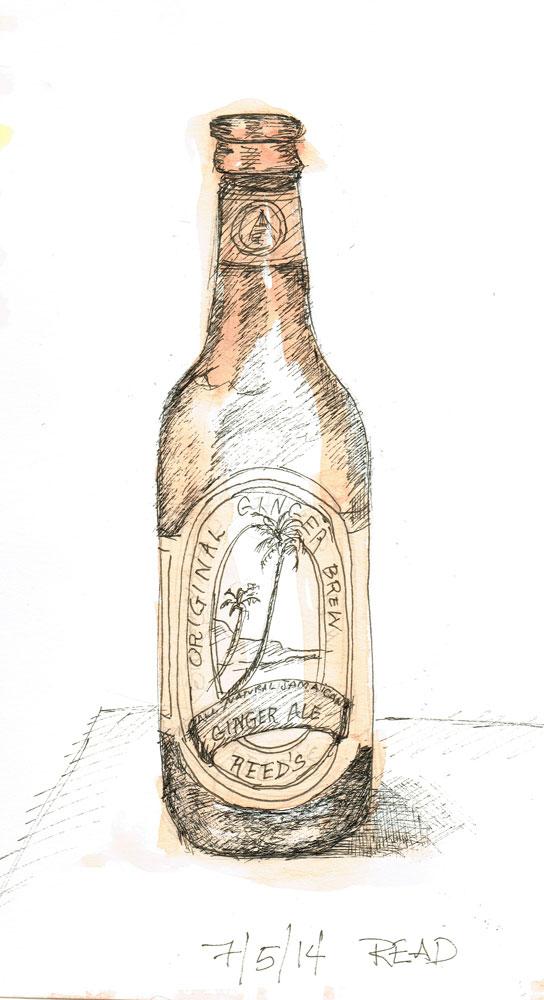 Ginger-Brew