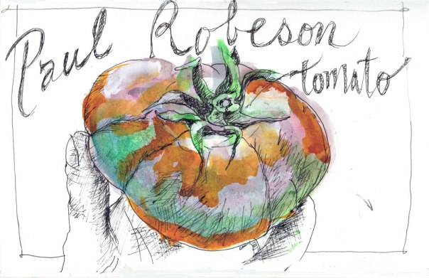 Paul-Robeson-tomato