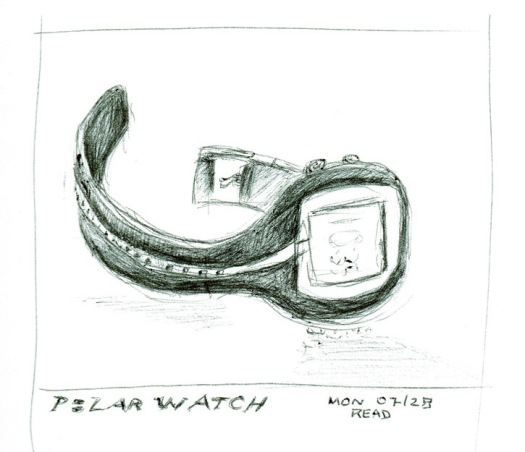 Polar-Watch cropped